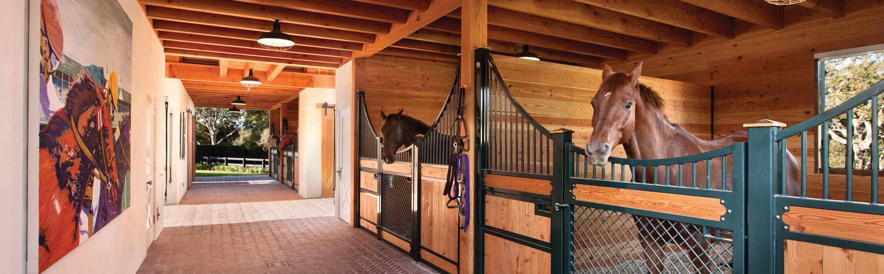 Getting More Information about Equine Equipment