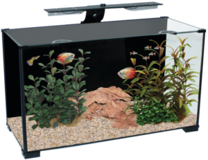 Salient Features of Aqua One Fish Tanks