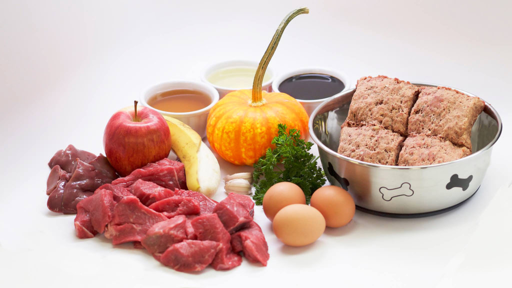 Dog Food Nutrition and Raw Food