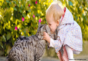 Cats and Kids – What You Should Know