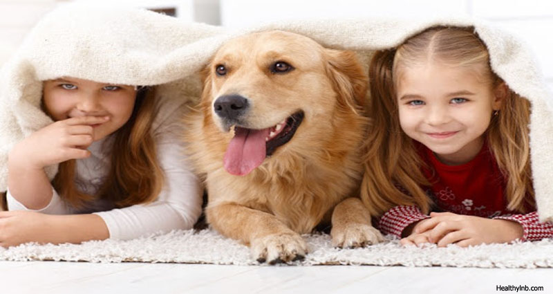 Are Your Kids Ready For Pets?